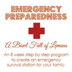 """Emergency Preparedness  """"Emergency Binder & Cash Stash"""" not a preper but sounds like a good thing to have on hand"""