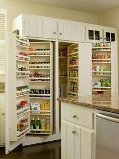 Neat idea, but it doesn't appear to give a lot of space for larger items. Maybe 1 side like this and the other side with large pull out drawers for cereal boxes, pasta, rice, flour etc.