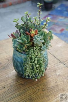 22. Lots of #Impact - 43 Outstanding #Succulent Gardens You Can #Create at Home ... → #Gardening #Succulents