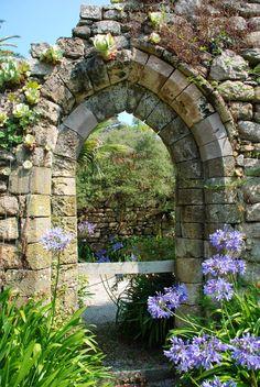 Tresco Abbey Garden, Tresco, Isles of Scilly http://www.justsaying2u.com/2014/08/tresco-abbey-garden-tresco-isles-of.html
