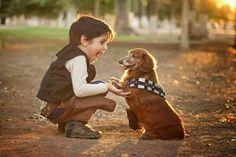 Educando a su mascota