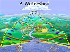 A watershed is the area of land where all of watershed the water that is under it or drains off of it goes into the same place.