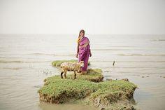 Sur les rives de Ghoramara