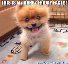 happy friday funny post | happy friday