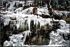 World's End State Park - Pho·to·gra·phy    I've gone back to this location several times this year and just have not had the spectacular view that this first trip gave me of the ice on the cliff side.