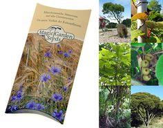 """Saatgut Set: """"Australische Pflanzen"""" 3 typische Pflanzensorten aus Australien als Samen für die Anzucht in schöner Geschenk-Verpackung: AmazonSmile: Garten"""