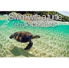 Bucket list ❤ Swim With A Turtle Scuba Diving Quotes, Best Friend Bucket List, Stuff To Do, Things To Do, Bucket List Before I Die, Cities, Life List, Summer Bucket Lists, So Little Time