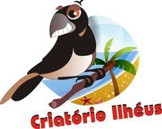 Criatório Ilhéus - criatorioilheus.blogspot.com.br