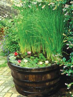 Water Features for Any Budget | Landscaping Ideas and Hardscape Design | HGTV