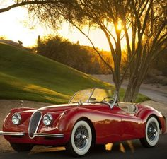 1954 Jaguar XK120 SE Roadster...Re-pin...Brought to you by #CarInsurance at #HouseofInsurance in Eugene, Oregon