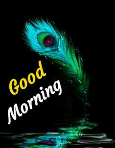 Good Morning Images For Whatsapp Good Morning Beautiful Flowers, Good Morning My Love, Morning Wish, Morning Inspirational Quotes, Good Morning Quotes, Good Morning Images Hd, Quotes For Whatsapp, Krishna Pictures, Butterfly Wallpaper