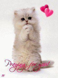 I'll put you on my prayer list...I really, really will!