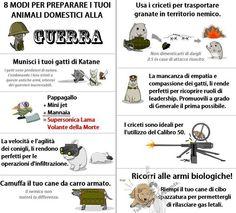 Otto modi per preparare i tuoi animali domestici alla guerra