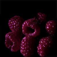 Black Raspberry Vanilla Type Fragrance Oil