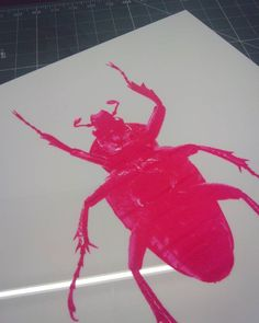 """""""Oh hey"""" is ready to frame! Second piece from the insect range. #ohhey #laserengraved #neonpink #beetle #jensheehan #instaart #instaartist #forsale"""