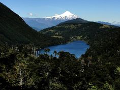 Lago Tinquilco, southern Chile.
