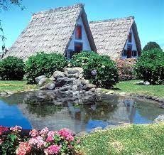 Resultado de imagem para a ilha da madeira