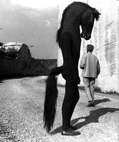 Jean Cocteau with Horse-men on the set of Testament d'Orphée, Les Baux de Provence, Photo by Lucien Clergue Creepy Photos, Strange Photos, Creepy Images, Film Noir Fotografie, Old Photos, Vintage Photos, Pierrot Clown, Jean Cocteau, Arte Obscura