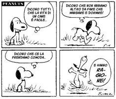 Snoopy e il senso delle cose