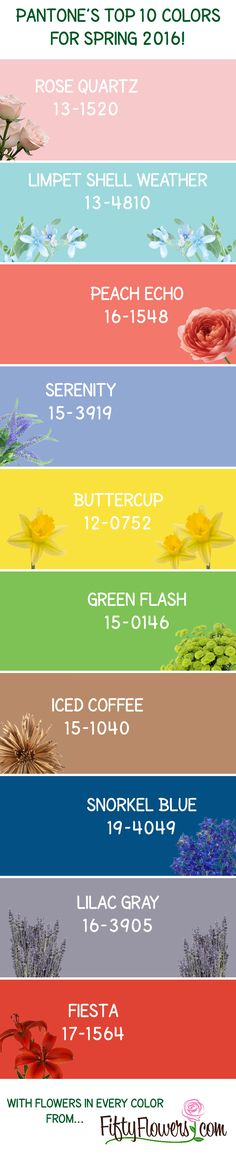 Pantone, Spring 2016 and Spring on Pinterest