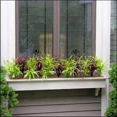 Tips on how to create a beautiful window box display with artificial outdoor plants such as our hanging azalea bushes, ivy, artificial grass and more! Winter Window Boxes, Window Box Plants, Window Box Flowers, Window Planter Boxes, Planter Ideas, Flower Boxes, Artificial Plants And Trees, Fake Plants, Cool Plants
