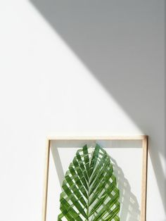 DIY-Leaf-Art-MOEBE-Frame @monsterscircus