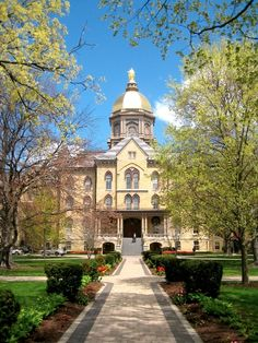 University of Notre Dame: The Golden Dome Notre Dame Football, Alabama Football, American Football, College Football, Browns Football, College Campus, University College, University Of Notre Dame, University Tennessee