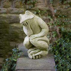 The Thinking Man's Frog A-385