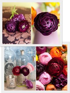 Gorgeous deep colours ranunculus via Flowerona