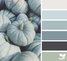 ❤ =^..^= ❤ { pumpkin tones } image via: @suertj