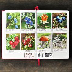 Anna Rastorgueva: Illustrated dictionary making. Watercolor Sketchbook, Art Sketchbook, Botanical Art, Botanical Illustration, Herb Art, Nature Sketch, Copic Art, Sketch Markers, Nature Journal