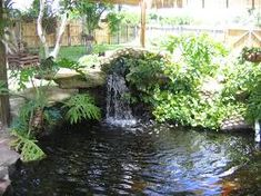 Image result for pond waterfalls ideas