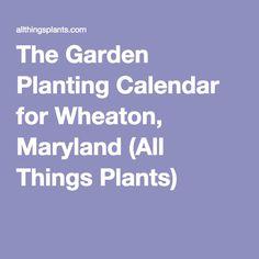 The Garden Planting Calendar