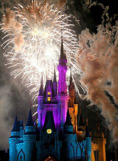 Fireworks Daily - Disney