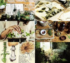 """""""Hogwarts subjects 