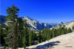 Tioga Road, Yosemite National Park  / Olmstead Point views