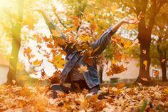 autumn, leaf, love Father, Leaves, Autumn, Children, Pai, Young Children, Boys, Fall Season, Kids
