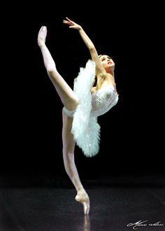 "gorbigorbi: "" Svetlana Zakharova (Bolshoi Ballet) Photo © Mário Assis Veloso """