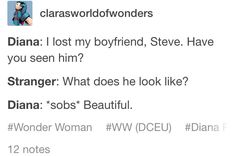 Diana: I lost my boyfriend, Steve. Have you seen him? Stranger: What does he look like? Diana: *sobs* Beautiful.