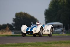 Maserati Tipo 61 Birdcage (Chassis 2457 - 2014 Goodwood Revival) High Resolution Image