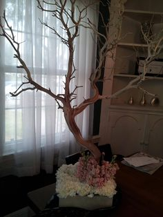 Wishing tree. Set up tree at reception and have guests write nots of encouragement and well wishes for the newly weds. So cute!