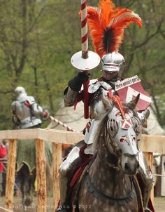 Knight tournament on horseback XIV by =RivenPine