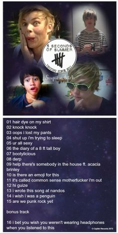 Hahaha I'd totally buy this....my favorite is number nine And the bonus track describes every one of their twitcams ever.