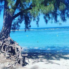 #plage #soleil #sable #sun #beach #island #iledelareunion #lareunion #labobine by angelikrob