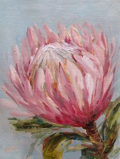 """Kitchen protea daily painting by Heidi Shedlock - Art - Protea Art, Protea Flower, Art And Illustration, Guache, Arte Floral, Botanical Art, African Art, Art Oil, Painting Inspiration"