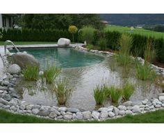 Natural swimming pool by Clear Water Revival Ltd - Bristol, UK design
