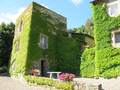 LA SELVA ESTATE | Siena, Italy | Luxury Portfolio International Member - Immobilsarda SRL