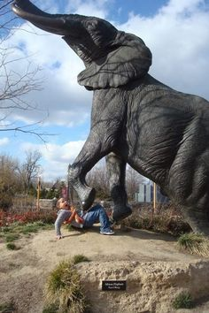 On of the many beautiful and breath taking statues, newer additions to the Zoo