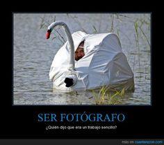 Ser fotógrafo: ¿Quién dijo que era un trabajo sencillo? (pretérito vs. imperfecto)