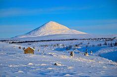 Venabygdsfjellet - med fjelltoppen Muen i solskinn,  en vakker vinterdag.